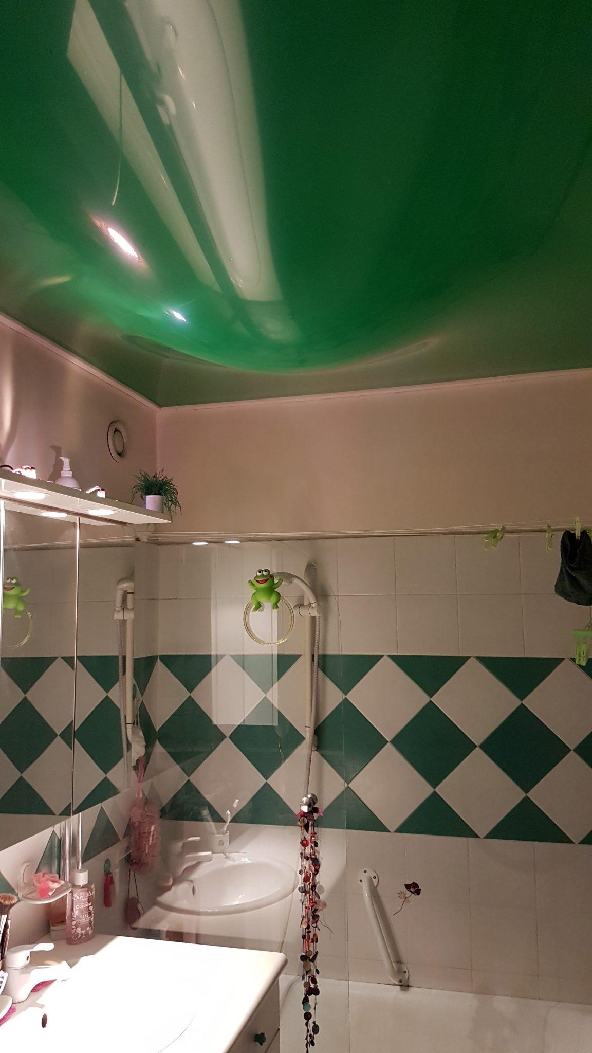 Plafond tendu degat des eaux